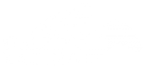 Dalziel Racing Logo