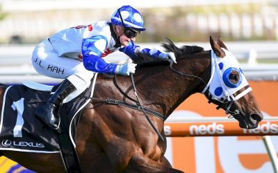 Mr Quickie Set for Another Group 1