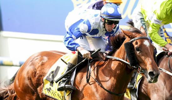 Uncatchable - Racehorse