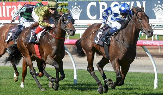 Throssell - Racehorse