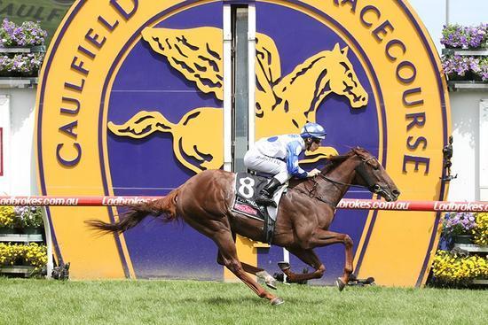 Australian Racehorse Syndicators