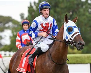 Mr Quickie Queensland Derby