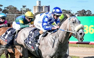 Riot And Rose Still Unbeaten: Now 4 Starts For 4 Wins For Dalziel Racing